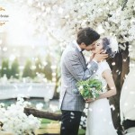 Love In Full Bloom – A Sharing On Korea Studios Photo Samples!