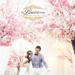 Lowest Priced Korea Pre-wedding Photoshoot Package in Singapore!