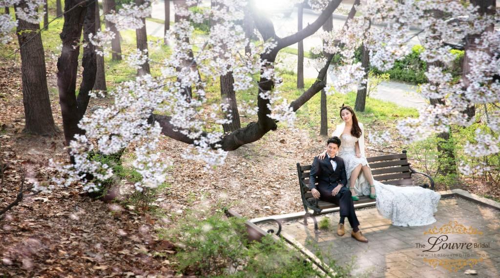 Korea-Prewedding-Photography-Spring-2