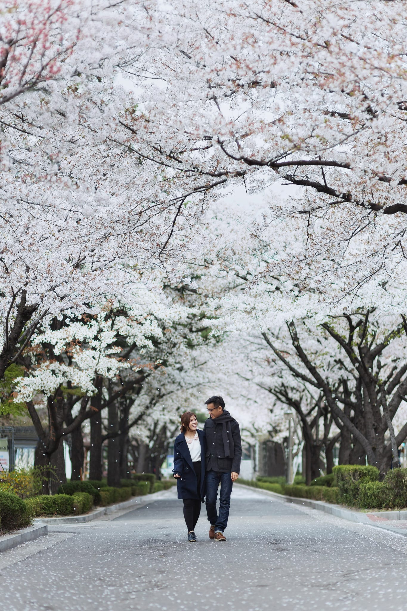 Most Popular Destinations For Your Overseas Pre-wedding
