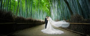 japan pre-wedding